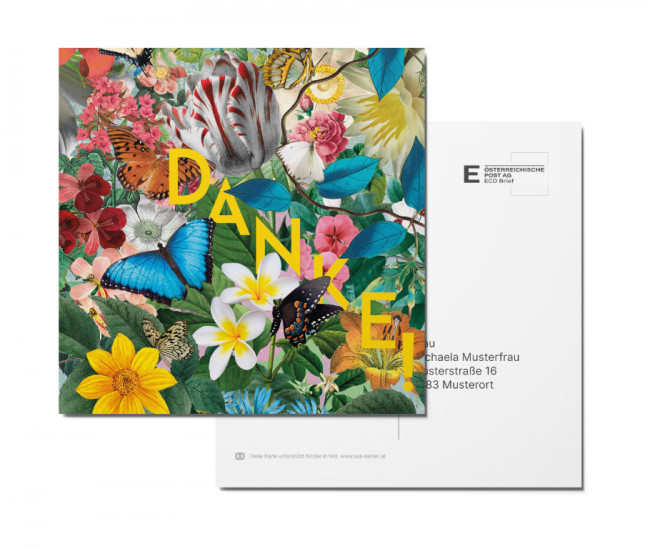 Postkarte - Dschungel