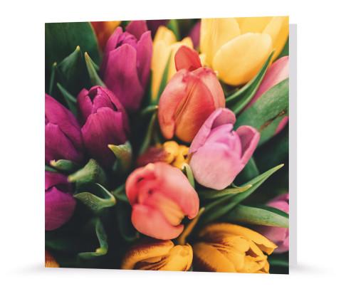 Grußkarte - Tulpenzauber